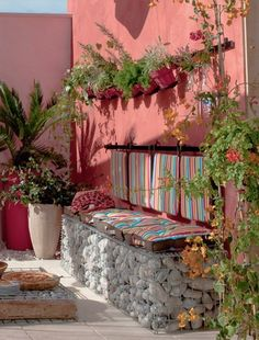 coral wall terrace with plants