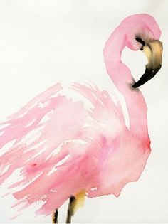 flamingo. illustration by inslee haynes