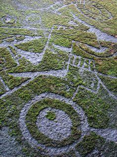 http://alltrends.over-blog.net/article-le-tag-devient-plus-ecologique-120019378.html