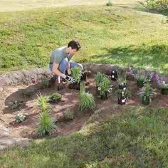 Plant a rain garden in your own yard with these simple-to-follow steps.