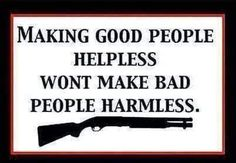 Support the Amendment! Another Pinner said: Do anti-gun politicians really think making us helpless will reduce crime? Are they really that dumb? or do they think WE are? Pro Gun, Thats The Way, That Way, Thing 1, Gun Rights, Gun Control, 2nd Amendment, Way Of Life, Common Sense