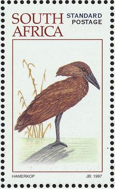 Stamps showing Hamerkop Scopus umbretta, with distribution map showing range Shoebill, Postage Stamp Collection, Postage Stamp Art, Wild Creatures, Vintage Stamps, African Animals, Kingfisher, Mail Art, Stamp Collecting