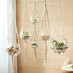 Found it at Wayfair - 5-Piece Glass Hanging Planter Set