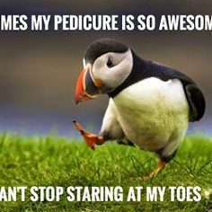 Happy Saturday from #NPQ! Look at my awesome pedicure! So here at NPQ we…