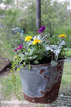 A rusty bucket and spring create the perfect junker's hanging flower basket! By Gypsy Farm Girl