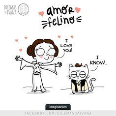 Dilemas da Ivana + Gatos + Star Wars: amamos muito. <3