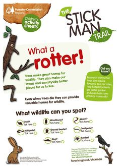 When trees die they provide valuable homes for lots of creepy crawlies! Have fun spotting them with the children this weekend with our 'What a rotter! Home Education Uk, Outdoor Education, Outdoor Learning, Forest School Activities, Nature Activities, Activities For Kids, Gruffalo Activities, Play Based Learning, Home Learning
