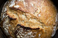 Dutch Oven No-Knead Herb Bread  2 1/2 cups lukewarm water  3 g active yeast (the size of a pea) or 1/4 tsp dried yeast  2 tsp sea salt  1 tsp unpasteurized honey  1 handful fresh herbs or kale, very finely chopped  2 3/4 cups (400 g) whole spelt flour  2 cups (300 g) light spelt flour  extra flour for folding  1 oven proof dutch oven, cast iron or ceramic pot
