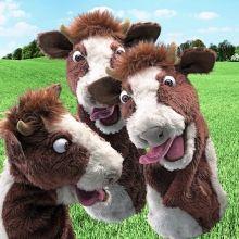 Krava s vyplazeným jazykom - Veľké bábky Stage Puppet - Plyšové bábky Folkmanis - Bábkové divadlo - Hračky pre deti - Hračky a Detský nábytok- Detský Sen - Maxus