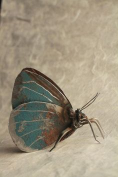 """3"""" Holly Blue Butterfly Recycled Welded Scrap Metal Sculpture, Unique Art Work, Reclaimed by GreenHandSculpture on Etsy https://www.etsy.com/listing/215547333/3-holly-blue-butterfly-recycled-welded"""
