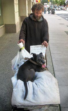 87 The Homeless Their Pets Ideas Homeless Man Pets Homeless