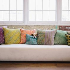 Love this couch. And it's occupant.