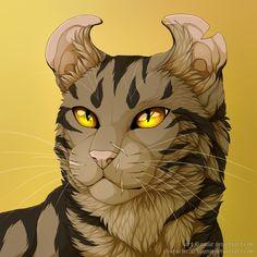 Owlstar by Vialir.deviantart.com on @DeviantArt