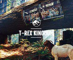 Rexy's kingdom