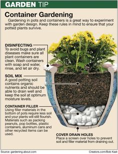 If you are planting in large pots or buckets use this method. I used aluminum cans.