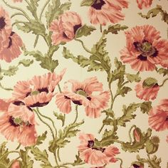 vintage wallpaper (Instagram photo by @anna_birdsofohio)