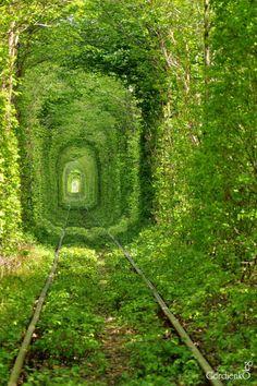 Тунель кохання, Клевань, Рівненська область