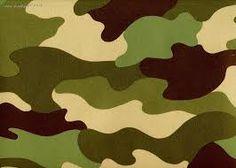 Znalezione obrazy dla zapytania camouflage