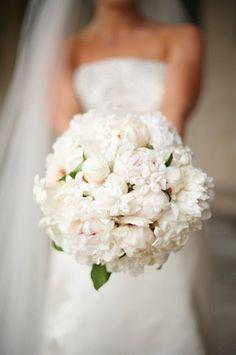 Great wedding photo idea~