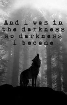 Discover and share Wolf Quotes About Love. Explore our collection of motivational and famous quotes by authors you know and love. Wolf Spirit, Spirit Animal, Dark Quotes, Me Quotes, Poems Dark, Light Quotes, Attitude Quotes, Lone Wolf Quotes, Wolf Qoutes