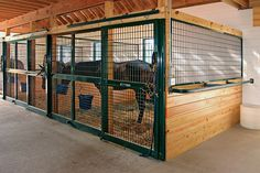 Exactly what I want! Horse Stall Fronts & Gates for Sale Barn Stalls, Horse Stalls, Dream Stables, Dream Barn, Gates For Sale, Horse Barn Designs, Barn Layout, Horse Barn Plans, Farm Barn