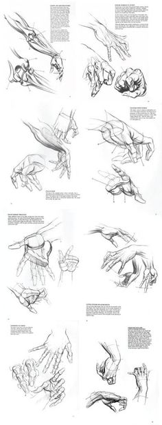 references-hands28-392x1024.jpg (392×1024)