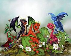 Mixed Berries Dragons by Stanley Morrison