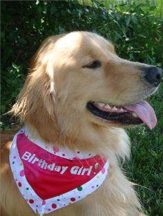 Birthday girl bandana.