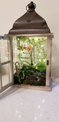 20 Impressive Terrarium Designs for Your Home Decoration Simple lantern terrarium with small greenery and decorative lighting to create beautify the room Fairy Lanterns, Lanterns Decor, Light Decorations, Home Decoration, Terrarium Design, Succulent Terrarium, Small Terrarium, Fairy Terrarium, Indoor Fairy Gardens