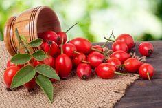 Rychle na šípky, tyhle recepty si nebudete chtít nechat ujít! Home Canning, Korn, Vegetables, Healthy, Al Dente, Health Magazine, Rose Trees, Harvest, Medicinal Plants