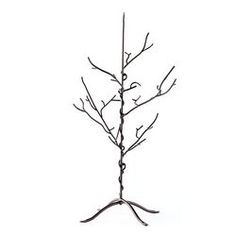 This is an awesome piece that can be used year round! It is called the gratitude tree. Created by Chief Marketing Officer Donna Spafford King to realize every day the blessings in her life and to encourage others to share theirs as well, this bronze metal tree is a visual reminder of our abundance of blessings. Write your daily blessings on the Gratitude Tree tags and hang them from your tree for year round enjoyment