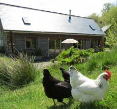 Ladybird Barn Love North Devon - Stunning Holidays in North Devon, England,