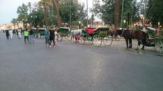 Place Jemaa el fnaa Marrakech