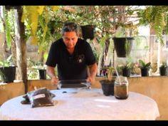 Como adubar suas plantas com Húmus de Minhoca - YouTube