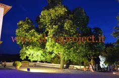 ALMA PROJECT @ Villa Corsini - tree lighitng 042