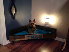 Corner Space Saving Pet Bed 24 x 24 by UncommonCustoms on Etsy
