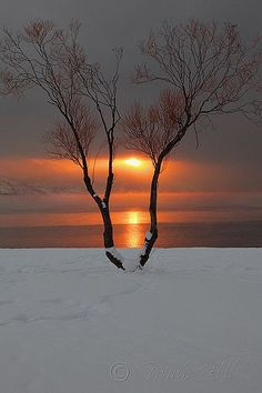 myprettyuniverse:  Fire & Ice by Lightdancer747 on Flickr