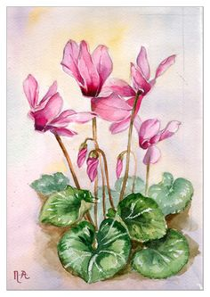 More flowers by GrungeBrideGoneGreen on DeviantArt Watercolor Flowers, Watercolor Paintings, Watercolor Portraits, Pictures To Paint, Painting Tips, Pencil Art, Colored Pencils, Flower Art, Flower Power