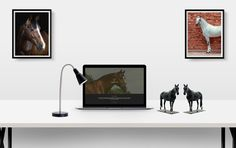 for Ballywalter Farms. In cooperation with Equipromotion Web Development, Farms, Web Design, Horses, Decor, Homesteads, Design Web, Decoration, Decorating