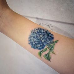 If coverup is required- hydrangea? But with more black outline?