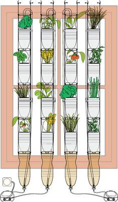 huerto urbano en ventanas