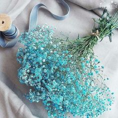 💐baby's breath💐 from vingle discovered by 그니 Light Blue Aesthetic, Blue Aesthetic Pastel, Aesthetic Colors, Flower Aesthetic, Wallpaper Nature Flowers, Beautiful Flowers Wallpapers, Flower Wallpaper, Galaxy Wallpaper, Pretty Flowers