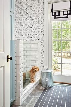Amazing mudroom boasts black and white dog wallpaper, Thibaut Best in Show Wallpaper, lined with a dog shower clad in white beveled subway tiles accented with black grout finished with a curved glass partition next to blue cabinets.
