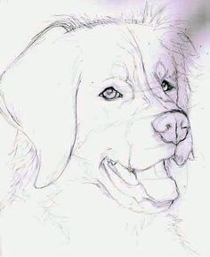 If you like animals, especially dogs, this page is for you. - If you like animals, especially dogs, this page is for you. You can paint a dog yourself with penci - Animal Drawings, Art Drawings, Drawings Of Faces, Drawing Animals, Dog Logo, Like Animals, Animals Dog, Dog Walking, Dog Art