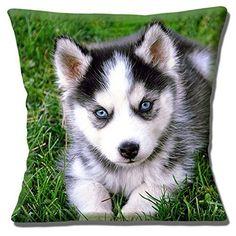 Cute Husky Puppy Yeux Bleu pour Chien Gris Blanc Noir Ver... https://www.amazon.fr/dp/B01DGYPYA2/ref=cm_sw_r_pi_dp_5w9zxbCTNPAZW