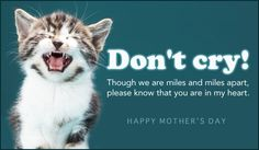 eCard - eMail Free Personalized Miss You Cards Online