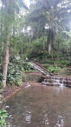 """Parque """"Los Tecajetes"""" en #Xalapa, #Veracruz, #México"""