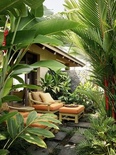 Tropical Backyard Landscaping, Tropical Garden Design, Garden Landscape Design, Tropical Houses, Backyard Patio, Tropical Outdoor Decor, Tropical Patio, Landscaping Ideas, Garden Bed Layout