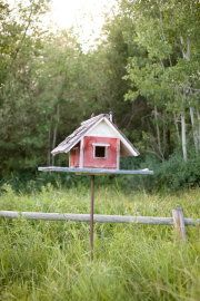 Need more birdhouses