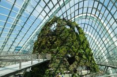Cooled Conservatories At Gardens